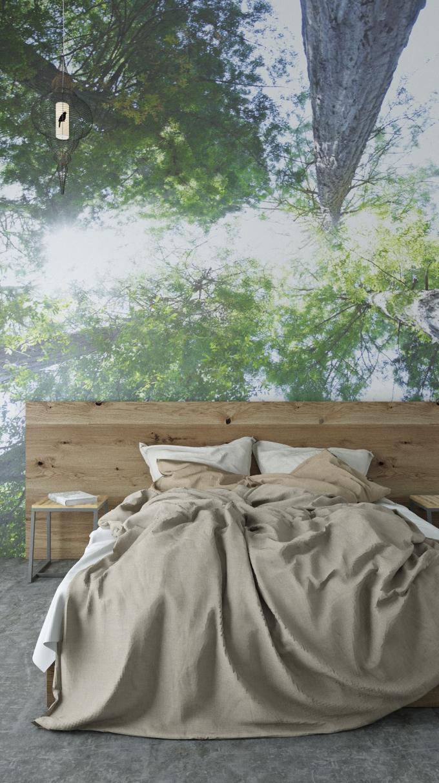 bed_masha