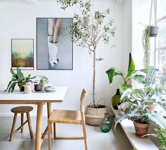 INSPIRATION # 130. GREEN IN YOUR SPACE