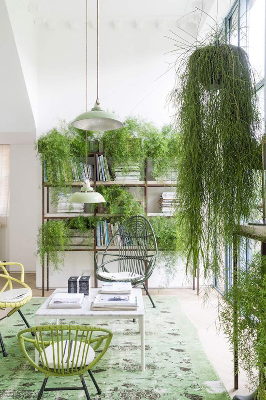Greendesign_ADASSISTANCE16